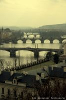 The Bridges of Prague by wooder