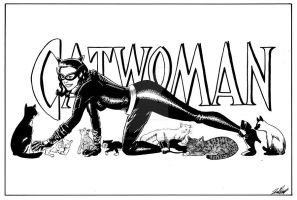 Catwoman Pin-Up by tedwoodsart