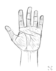Hand practise by RealSouji