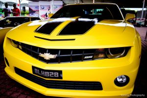 Chervolet Camaro SS Bumblebee by Tommy-YS