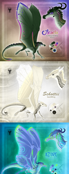 WoF Adopts Reference Sheet Set 2 by xTheDragonRebornx