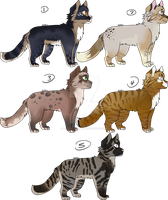 Cat Adoptables - #4 Open by alaskiiadopts