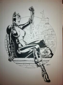 Catwoman commission by WestStudio3