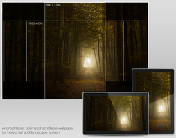 Autumn Forrest for Android by olympmedia