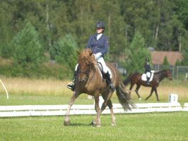 finnhorse, dressage august2 by wakedeadman