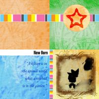 New Born scrapbook by noema-13