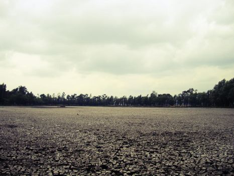 Dry lands by Superbiaa