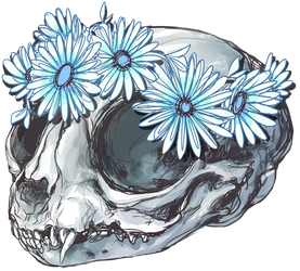kitten skull + flowers by aliensphynx