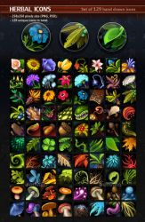 Herbal Icons by GraphicAssets