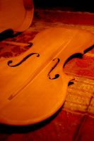 Violin by andreuchi