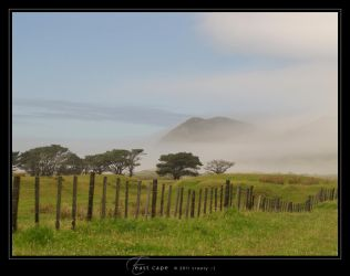 East Cape by Crooty