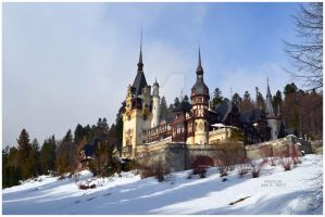 Winter at the Peles Castle III. by timelesscolors