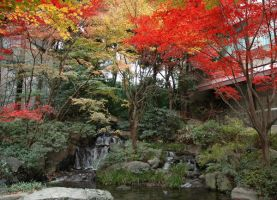 Trees in a japanese garden by heartyfisher