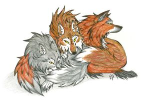 Three Wolves by CaptainMorwen