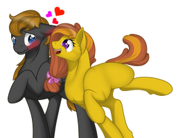 MLP Request: Romance Heart and Honey Ella by DeDonnerwolke