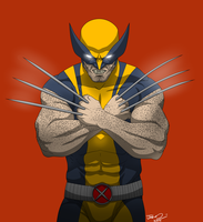 Wolverine X by MangleDangle