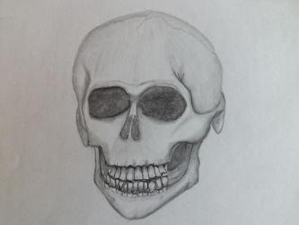 Anatomy Practice #1 Skull by Azzuris00