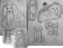 Sketches of dogs by 17cherry