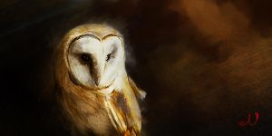 Owl by NickRileyArt