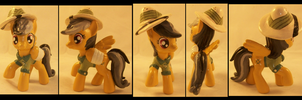 Daring Do: Rainbow Dash's Second Life by Gryphyn-Bloodheart