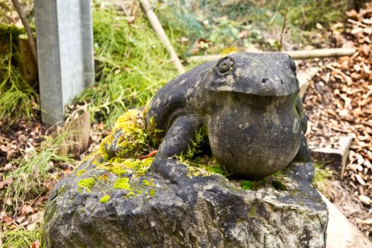 frog sculpture by maniacmadcap