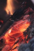 00069 - Burning Wood and Flames by emstock