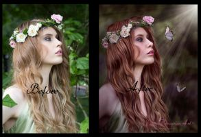 Reverie Before/ After by PaperDreamerArt