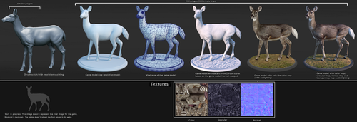 Whitetail Doe Construction by Arta