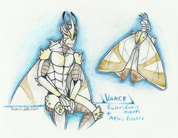 Vance moth beetle by Ouari