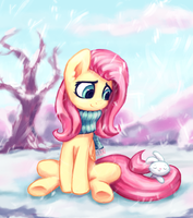 Winter Shy by INowISeeI
