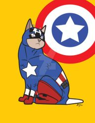 Captain Americat by Miss-Weez