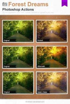 Forest Dreams Photoshop Actions by Wnison