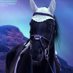 HEE - Stable Avatar by HollowTreeAcres