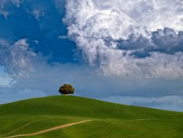 Tuscany 7 by rschoeller