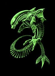 Xenomorph Dolphin by Patchworkdove