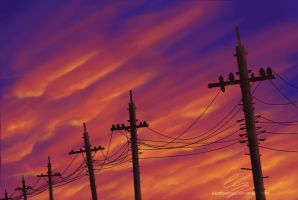 Pole wires by UszatyArbuz