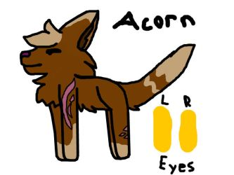 Acorn for... i think you get the point XD by Paint-y