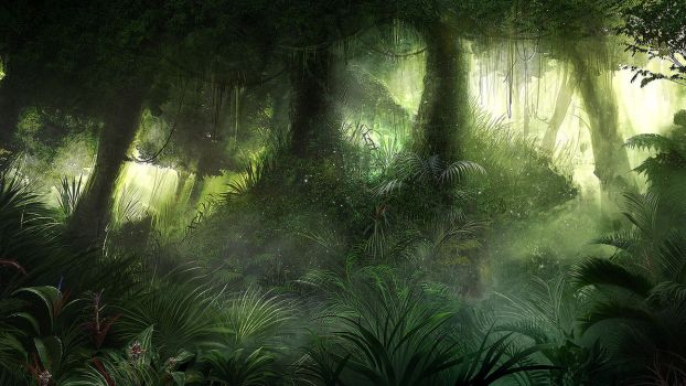 Jungle by karatastamer