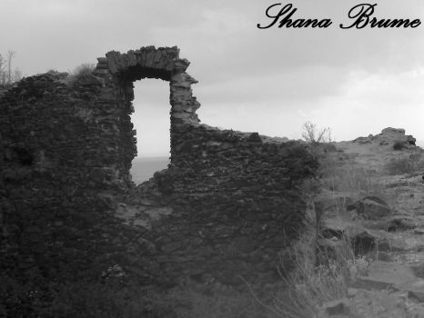 There was a castle... by Shana-Brume