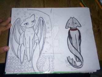 Light Fury and Toothless by NightGirl28
