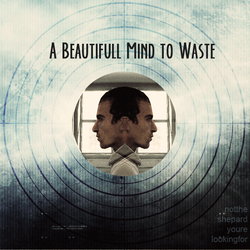 album- A Beautiful Mind to Waste by Ericanii