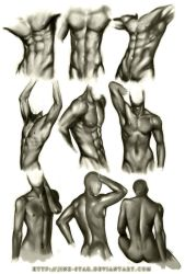 +MALE BODY STUDY III+ by jinx-star