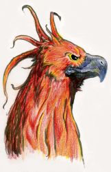 Fawkes by i-am-mighty