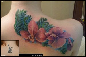 Orchids coverup by grimmy3d