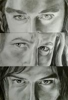 Heirs of Durin - Thorin, Fili and Kili by tofu0004