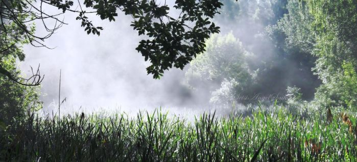 Just white fog by Angie-AgnieszkaB