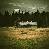 Cabin in the woods by minastir