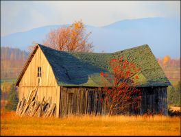 Abandoned Barn by JocelyneR