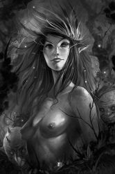 Dark Faeries Wood 2 by Coliandre