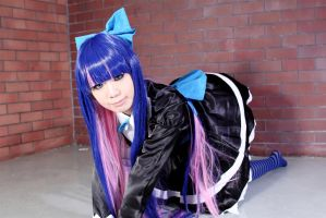 Stocking Anarchy [Panty and Stocking] cosplay by sosochan1314